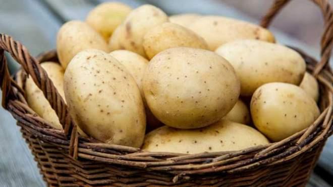 اسعار البطاطس تبدأ في الارتفاع