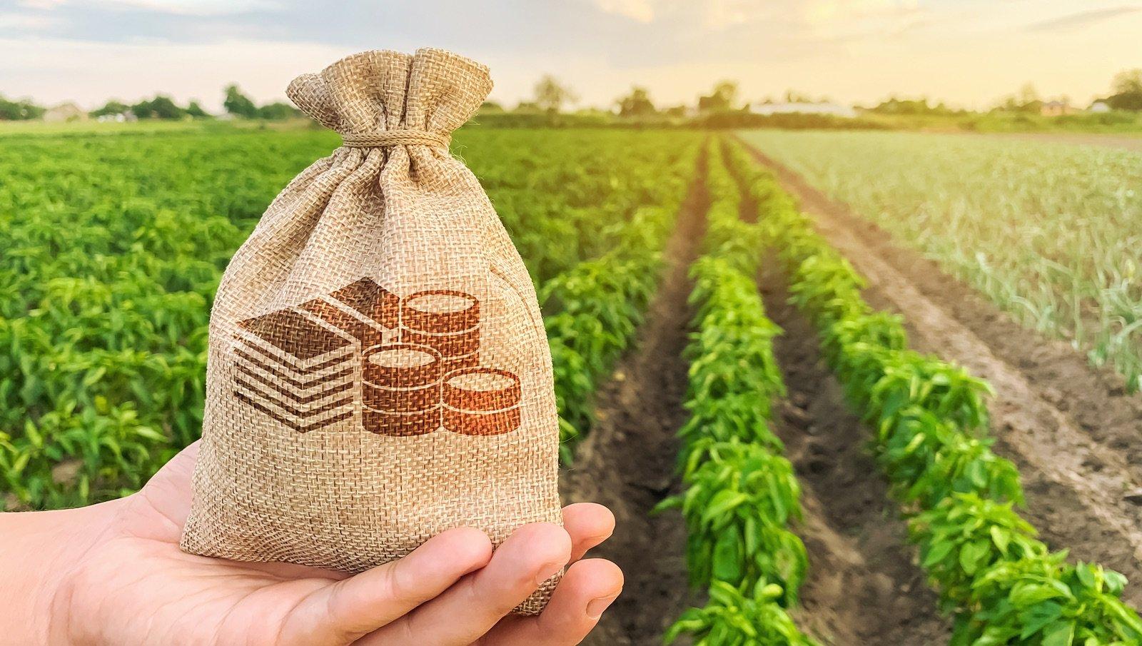 الاستثمار في القطاع الزراعي الاوكراني