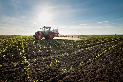 الانتاج الزراعي في اوكرانيا