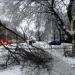 الثلوج الكثيفة تتسبب في قطع الكهرباء عن عدة مناطق اوكرانية