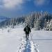 الثلوج في اوكرانيا