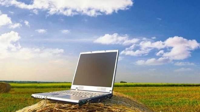 القطاع الزراعي يشهد ابتكارات رائدة خلال السنوات الاخيرة