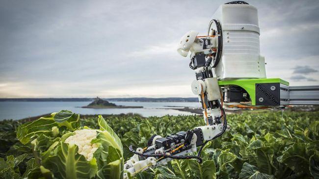 اليابان تبتكر روبوت لحصاد محاصيل الفاكهة