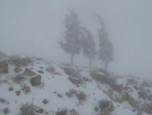 خطر الانهيار في جبال الكربات