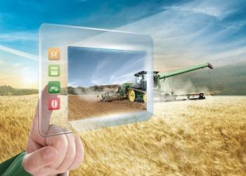 ما الذي علينا فعله لحماية الحبوب وزيادة الغلة