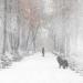 من جديد اوكرانيا على موعد مع الثلوج والامطار