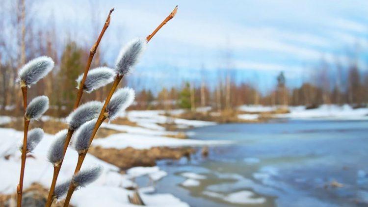 توقعات الطقس اليوم فبراير... سطوع الشمس وارتفاع الحرارة قادمان إلى أوكرانيا