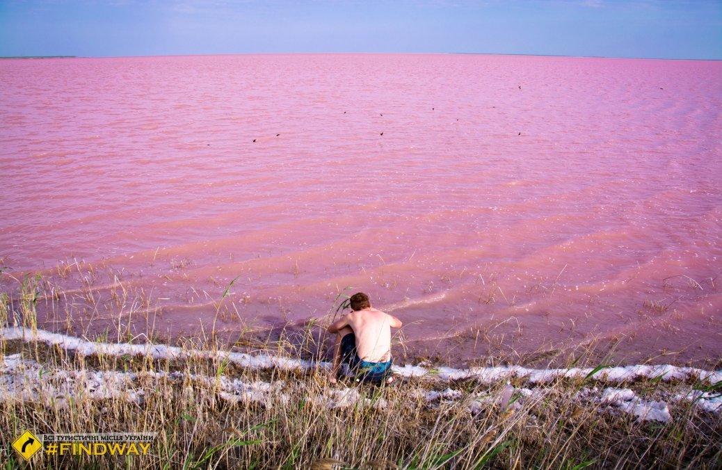 البحيرة الوردية الاكثر ملوحة في اوكرانيا