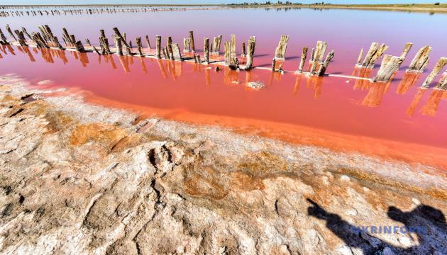 البحيرة الوردية Genichesk بأبعاد ثلاثية