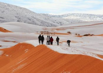 الثلوج تنزل على الصحراء