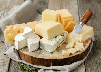 ناتاليا لوكيانوفا تفتح مصنعا للجبن في دونتيسك