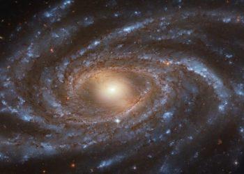 NGC 2336
