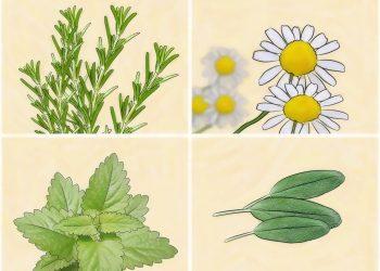 طريقة سهلة للتخلص من البراغيش المزعجة في أواني الزهور والمساعدة في تسميدها