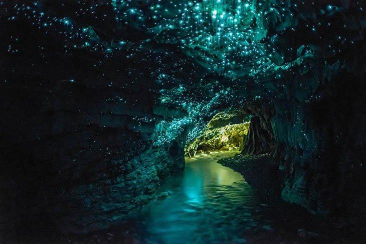 كهف وايتومو، نيوزيلندا
