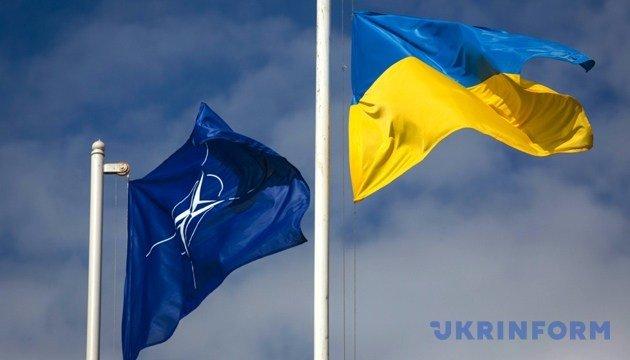 خمس دول في الناتو تعقد محادثات في البنتاغون لدعم أوكرانيا