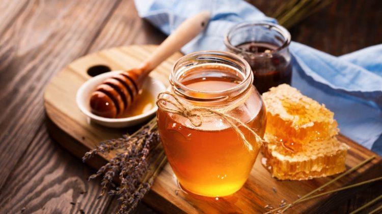 صيد العسل القديم في غرب إفريقيا