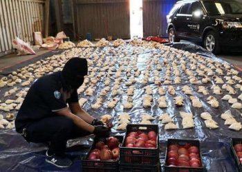 فاكهة بطعم المخدرات تغزو العالم والمصدر لبنان