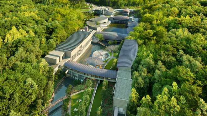 """متحف """"جسور الكريستال"""" تحفة فنية في أحضان الطبيعة"""