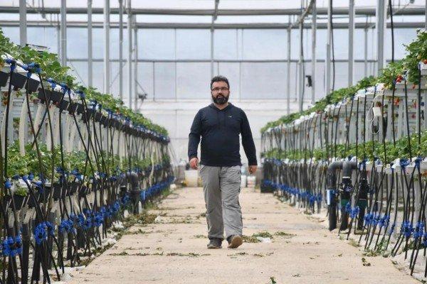 هيخان أوليتار من مصرفي ناجح الى مزارع بارع