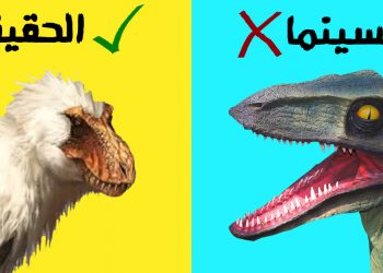 كل ما يجب أن تعرفه حول الديناصورات