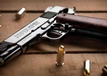 مجلس النواب يقترح مرة أخرى تنظيم حق الأوكرانيين في حمل السلاح