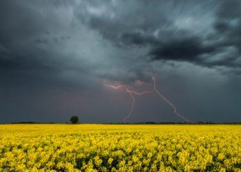 تعرف على حالة الطقس لهذا اليوم في اوكرانيا