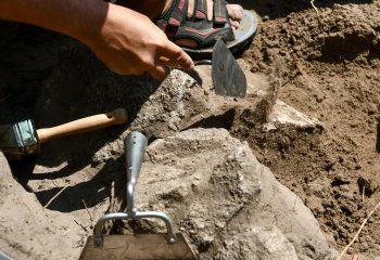 علماء الآثار يعثرون على عملات فضية رومانية في منطقة لفيف