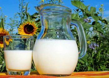 أوكرانيا قد تحظر استيراد الحليب ومنتجات الألبان من بيلاروسيا