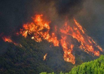 في اليونان يتم إنقاذ أولمبيا القديمة من حرائق الغابات