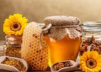 قطر تفتح اسواقها امام العسل الأوكراني