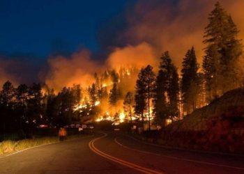 مليون هكتار من الغابات تحترق في روسيا