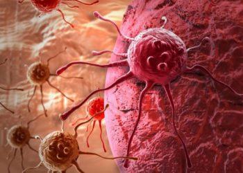العلماء يحددون السبب الرئيسي لسرطان البنكرياس