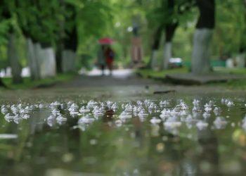حالة الطقس يوم الثلاثاء.